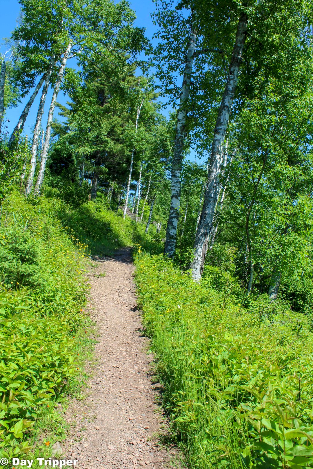 Gooseberry Falls State Park Hiking Club Trail