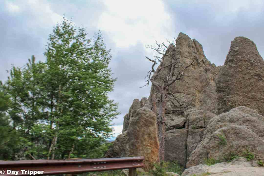 Driving Needles Highway