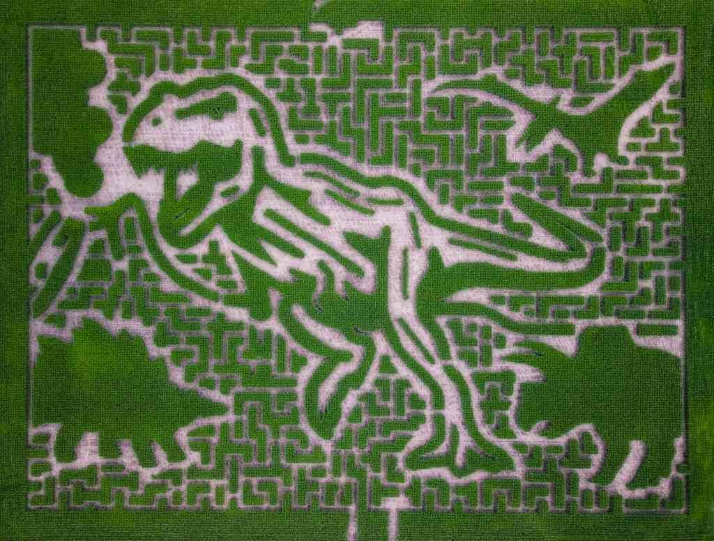 Severs Corn Maze 2019