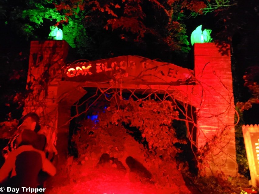 Haunted Forrest in Scream Town