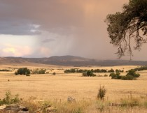 Rain over Butmaroo Range, from Days Hill, Bungendore, New South Wales, Australia