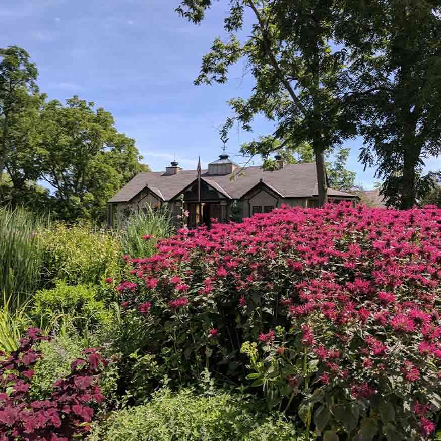 Public Gardens Around Rochester: MacKenzie Childs