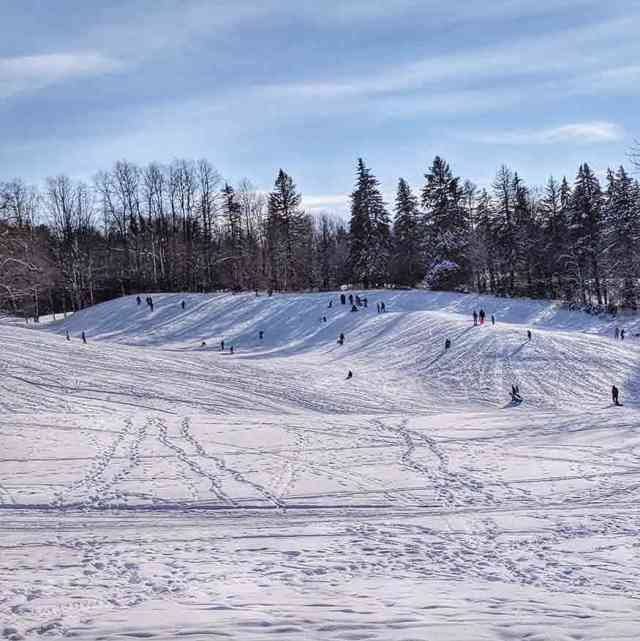 Sledding Hills Around Rochester: Mendon Ponds Park Monroe County