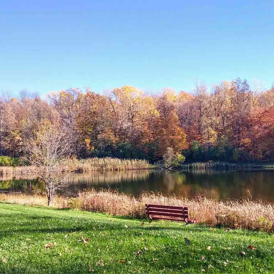 More day trips within 30 minutes: Brighton Town Park