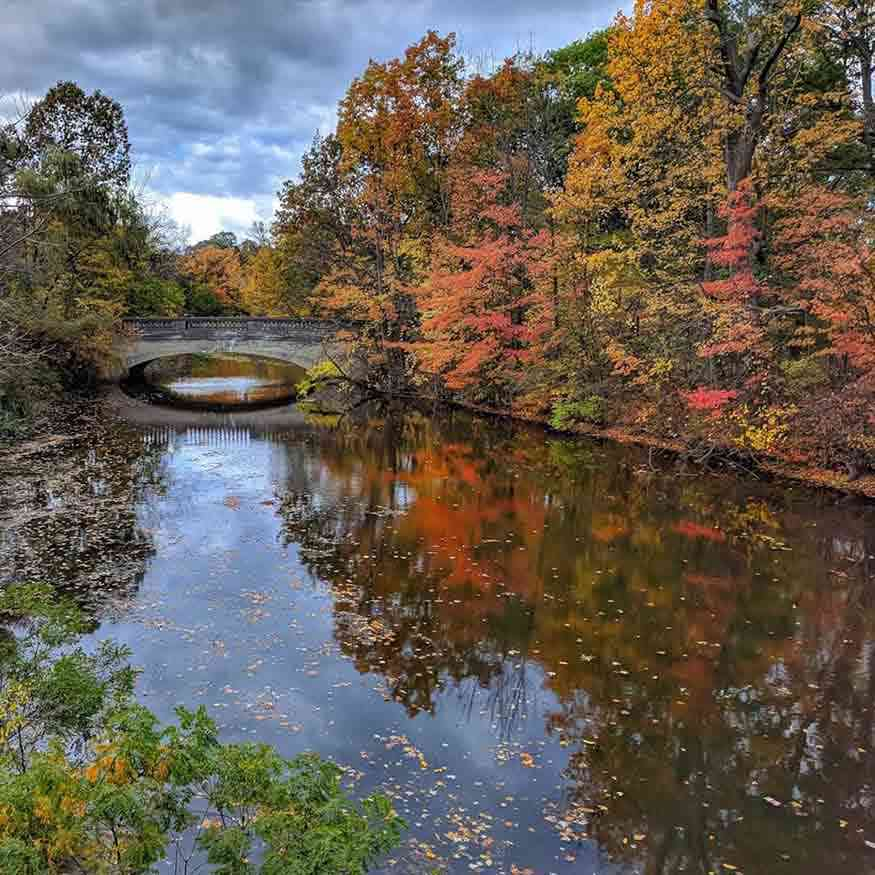 Autumn in Rochester: Red Creek through Genesee Valley Park