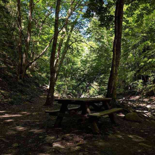 Picnic table Grimes Glen