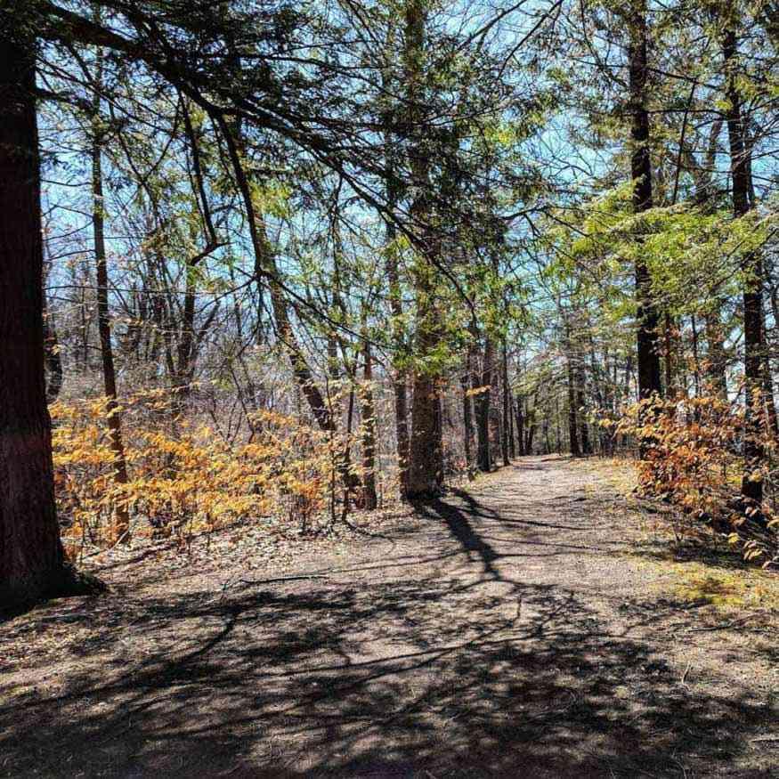 Seneca Park north trail