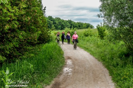Hiking Trails in Ontario, Island Lake Conservation Area, Caledon Hiking, Beautiful Places in Ontario,