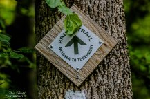Best Hiking Trails in Ontario, Ontario Hiking, things to see in Caledon,