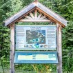 Cyprus Lake Trails, Hiking Trails In Ontario, Bruce Trail, Places to Se in Ontario, Tobermory Hiking,