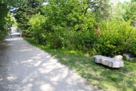 Things to See in Caledon, Thans Canada Trail Bench, Beautiful Places in Ontario, Hiking Trails in Ontario, Ontario Hiking, Hiking Trails in Caledon, Beautiful Towns in Ontario,