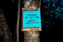 Limehouse Conservation Area, Ontario Hiking Trails, Beautiful Places in Ontario, Hiking Ontario,