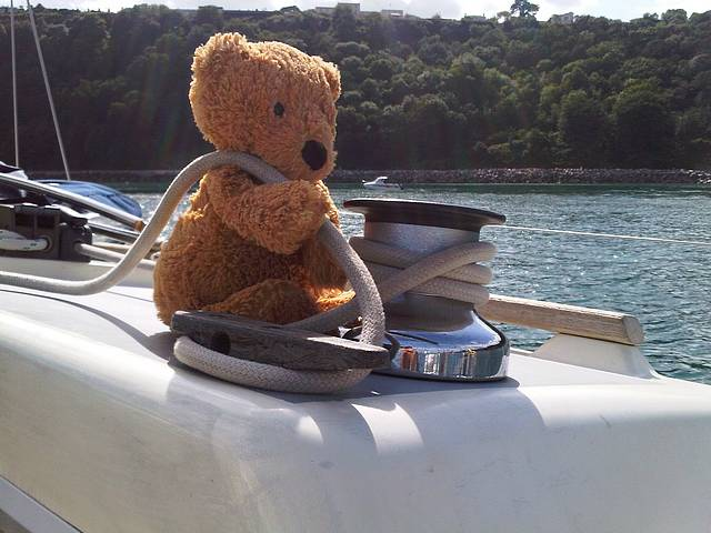 How could I exclude him!   Teddy lending .a helpful hand with Marion. :-)