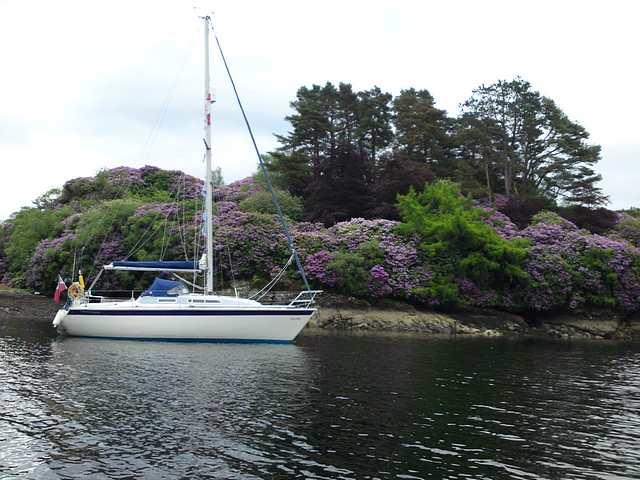 At anchor Eilean Dubh