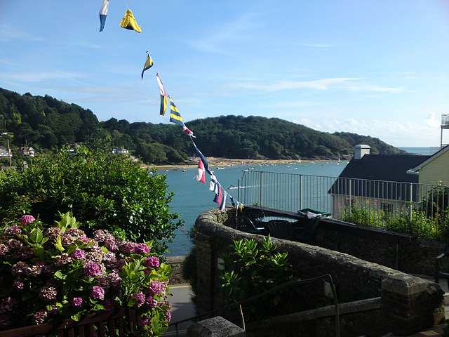 Salcombe from the town.