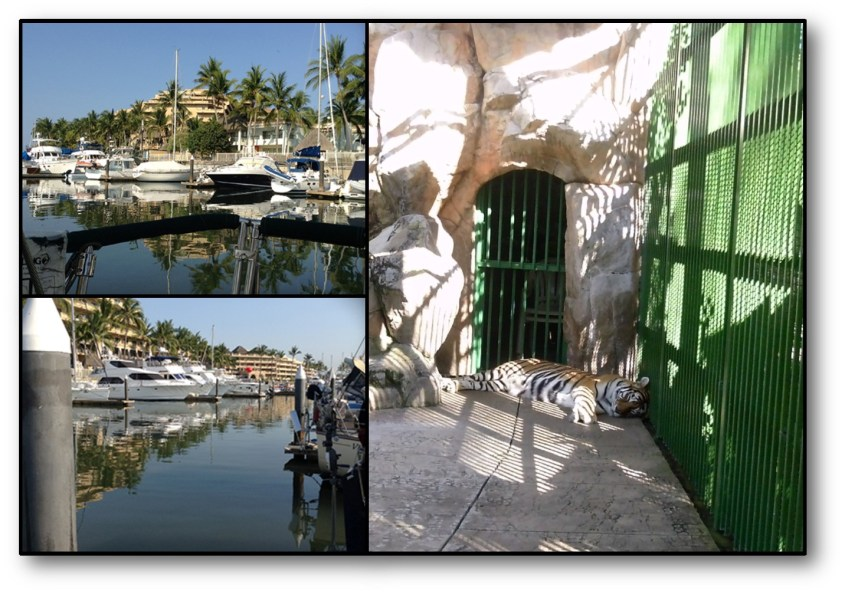 Paradise Marina Collage 1