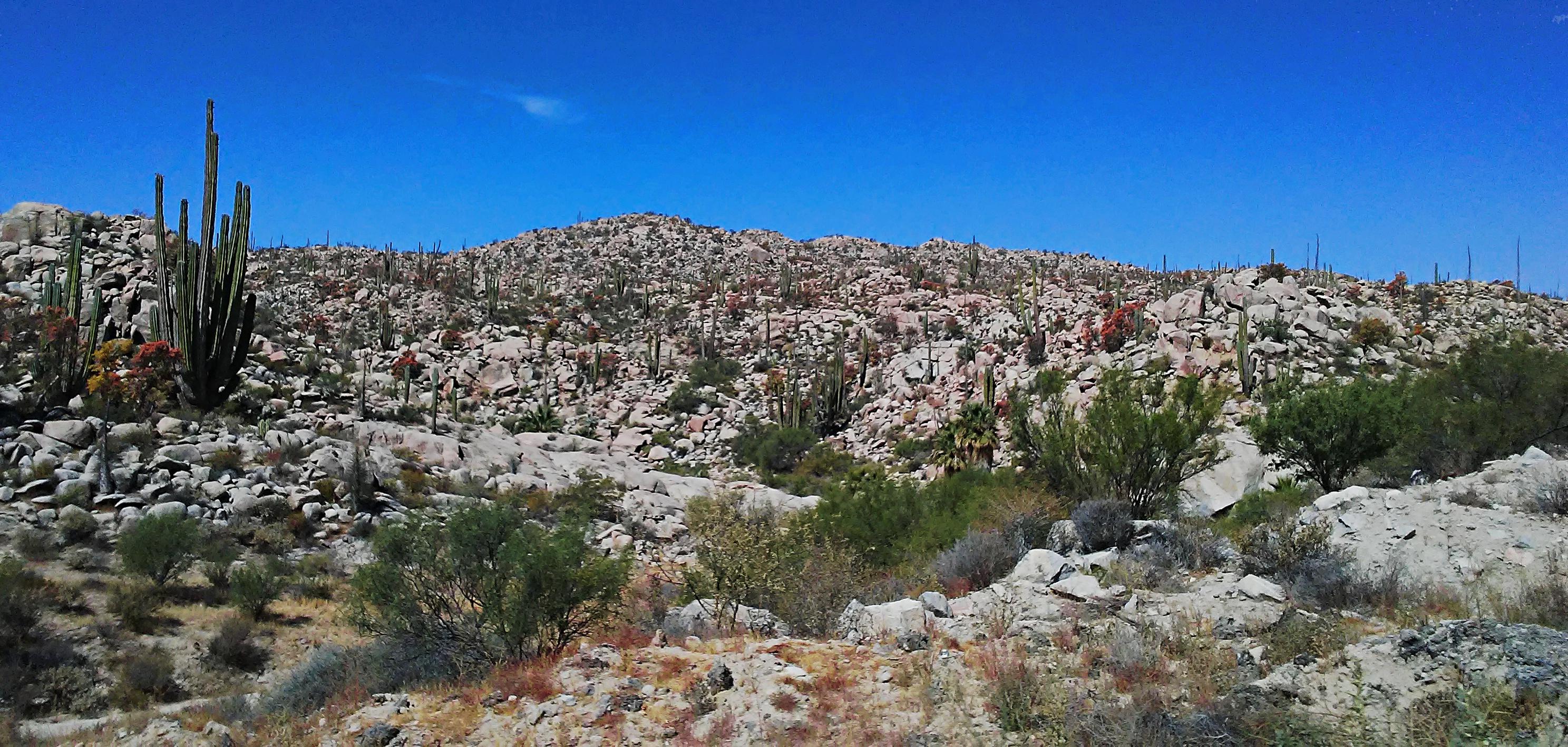 Border to La Paz - Rocks #2