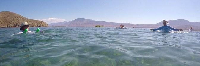 la-gringa-float.jpg