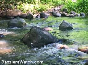 Blog Water