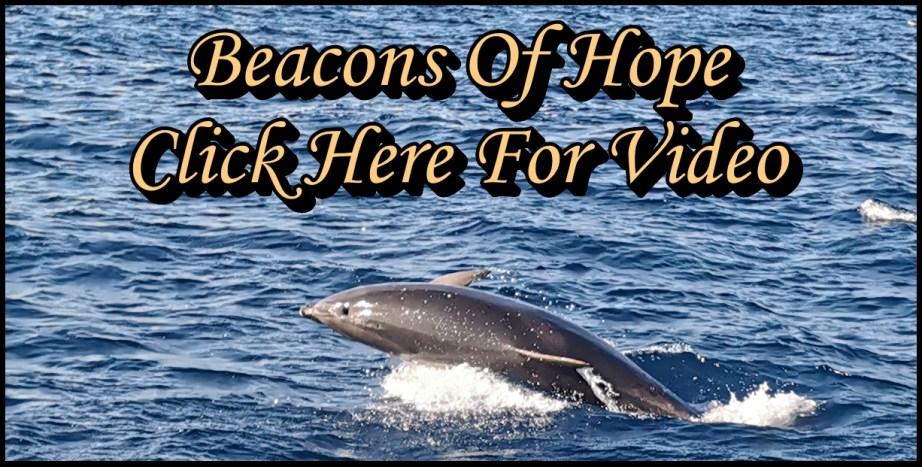 Brochure Sailing Beacons of Hope Video Link