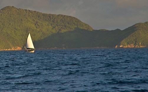 Dazzler Under Sail