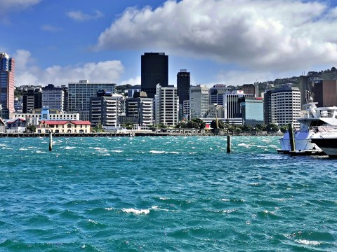 Wellington Cityscape With Windy Bay