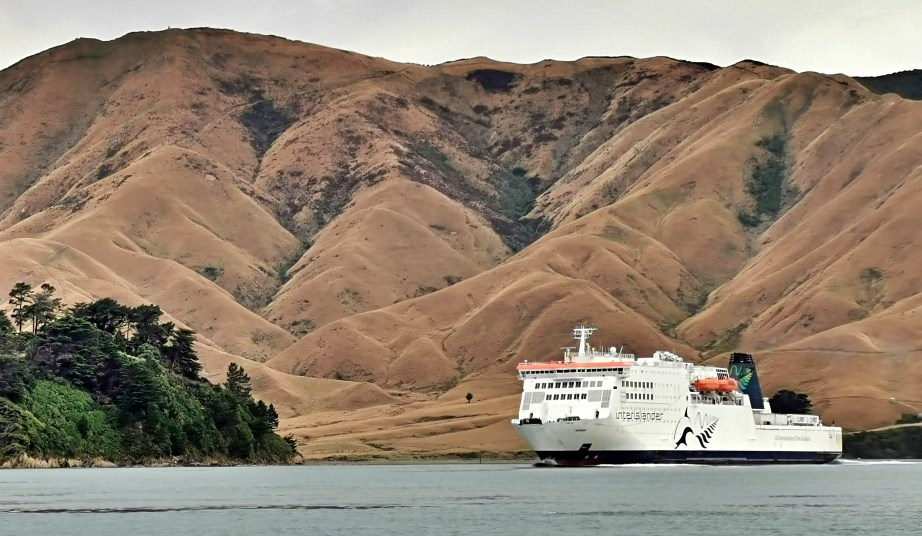 Intercontinental Ferry at Tory Channel