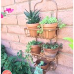 How to Use a Shower Caddy as a Vertical Planter
