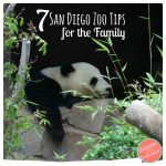 7 Helpful Family Tips for San Diego Zoo