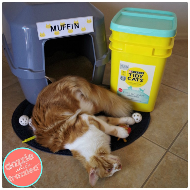 DIY cat name tag for litter box of Purina Tidy Cats Free and Clean Unscented litter.