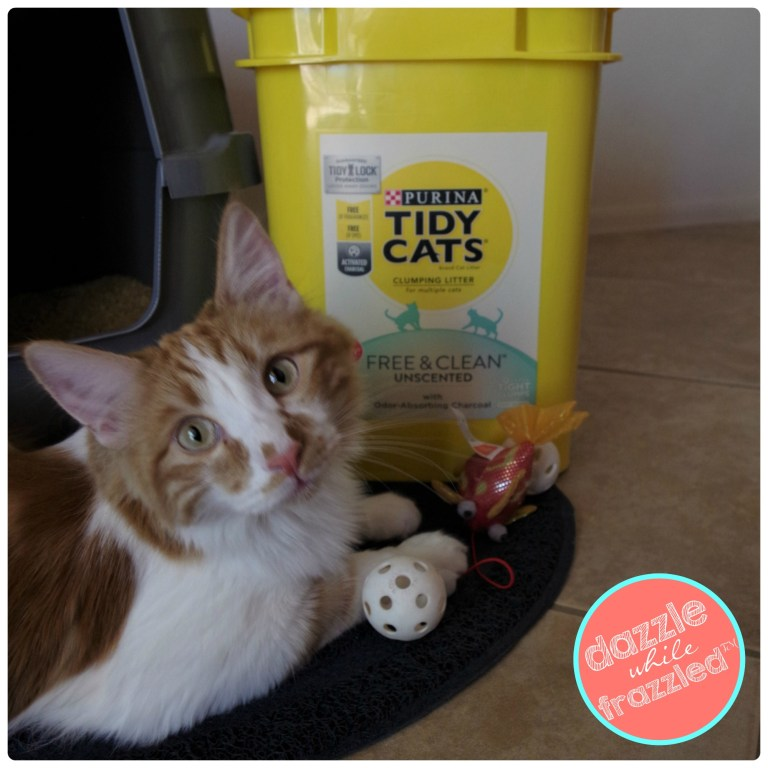 Purina Tidy Cats Free and Clean Unscented cat litter with DIY litter box name tag and checklist printable for bringing home a kitty.