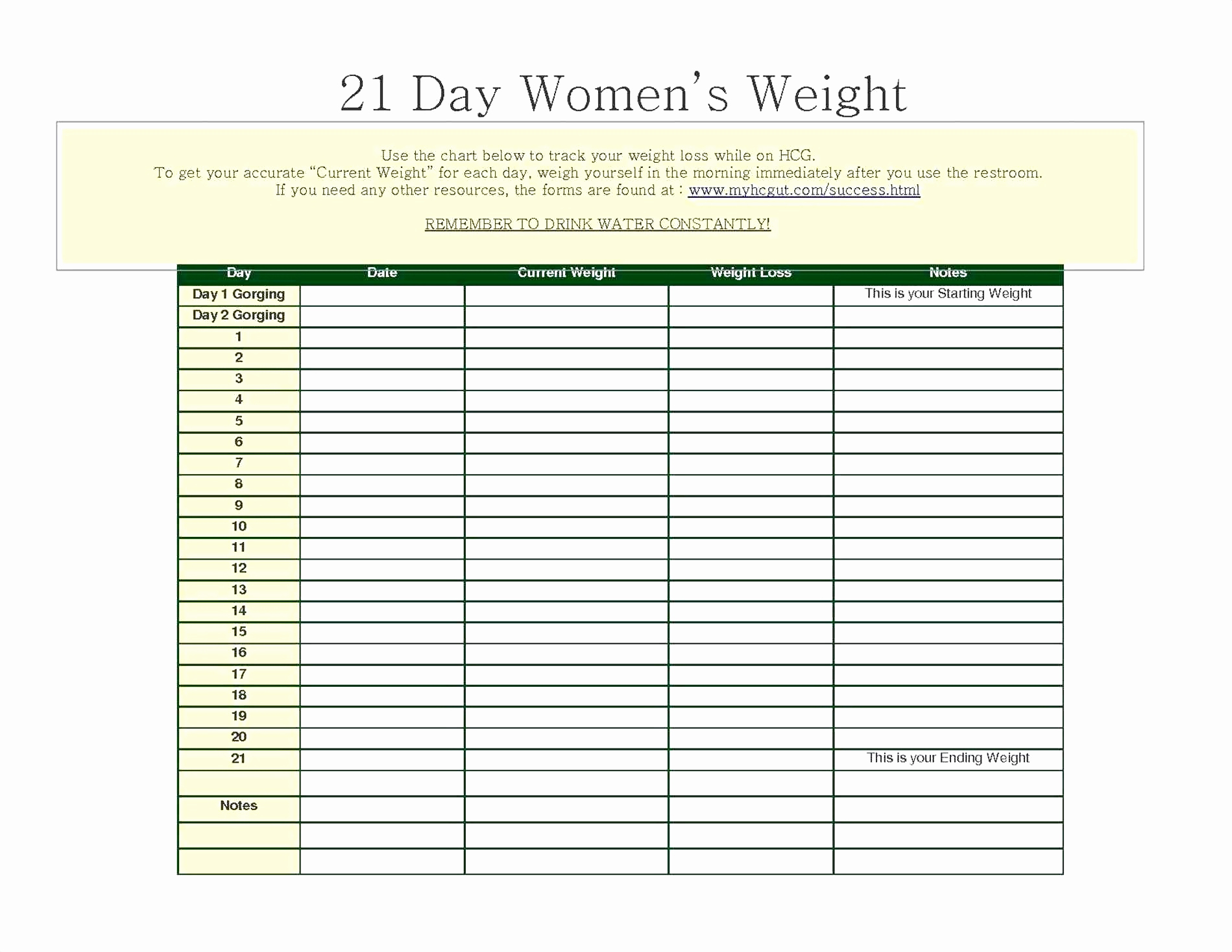 Weight Training Excel Sheet Elegant Strength Training Log