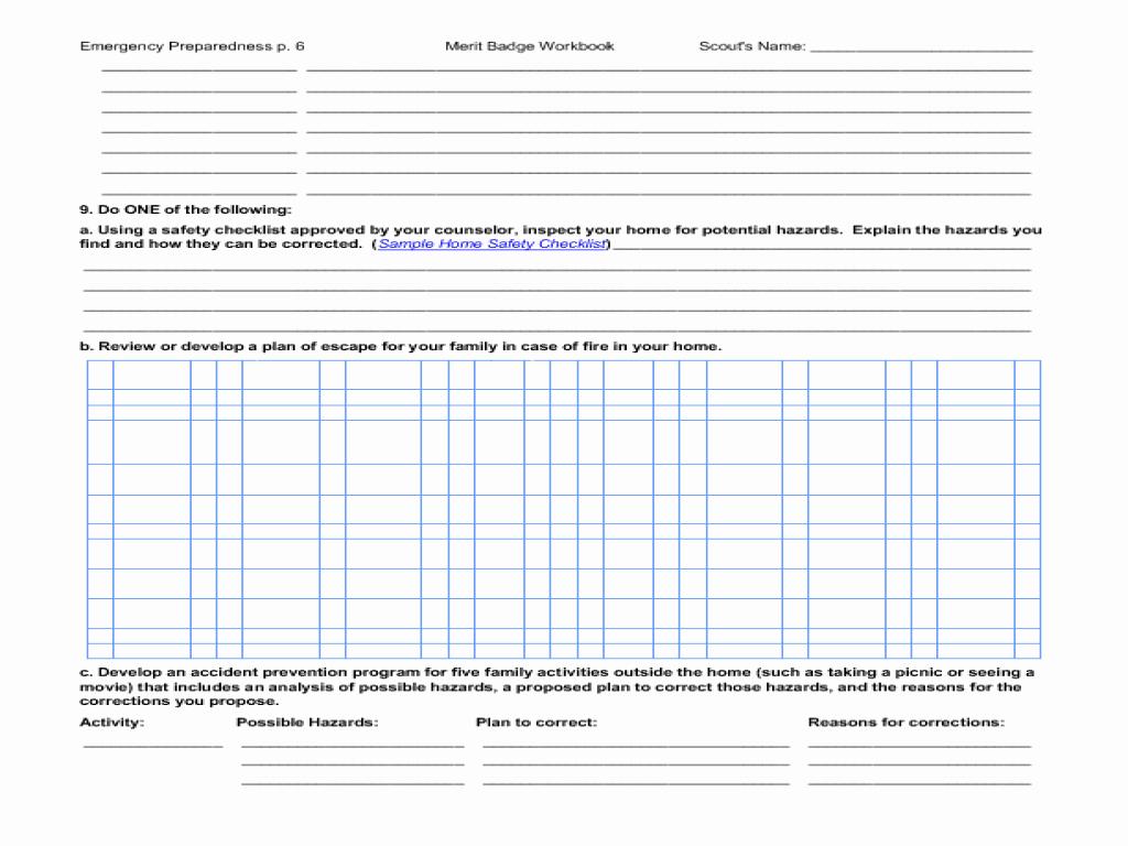 Cub Scout Treasurer Spreadsheet 1 Printable Spreadshee Cub Scout Treasurer Spreadsheet