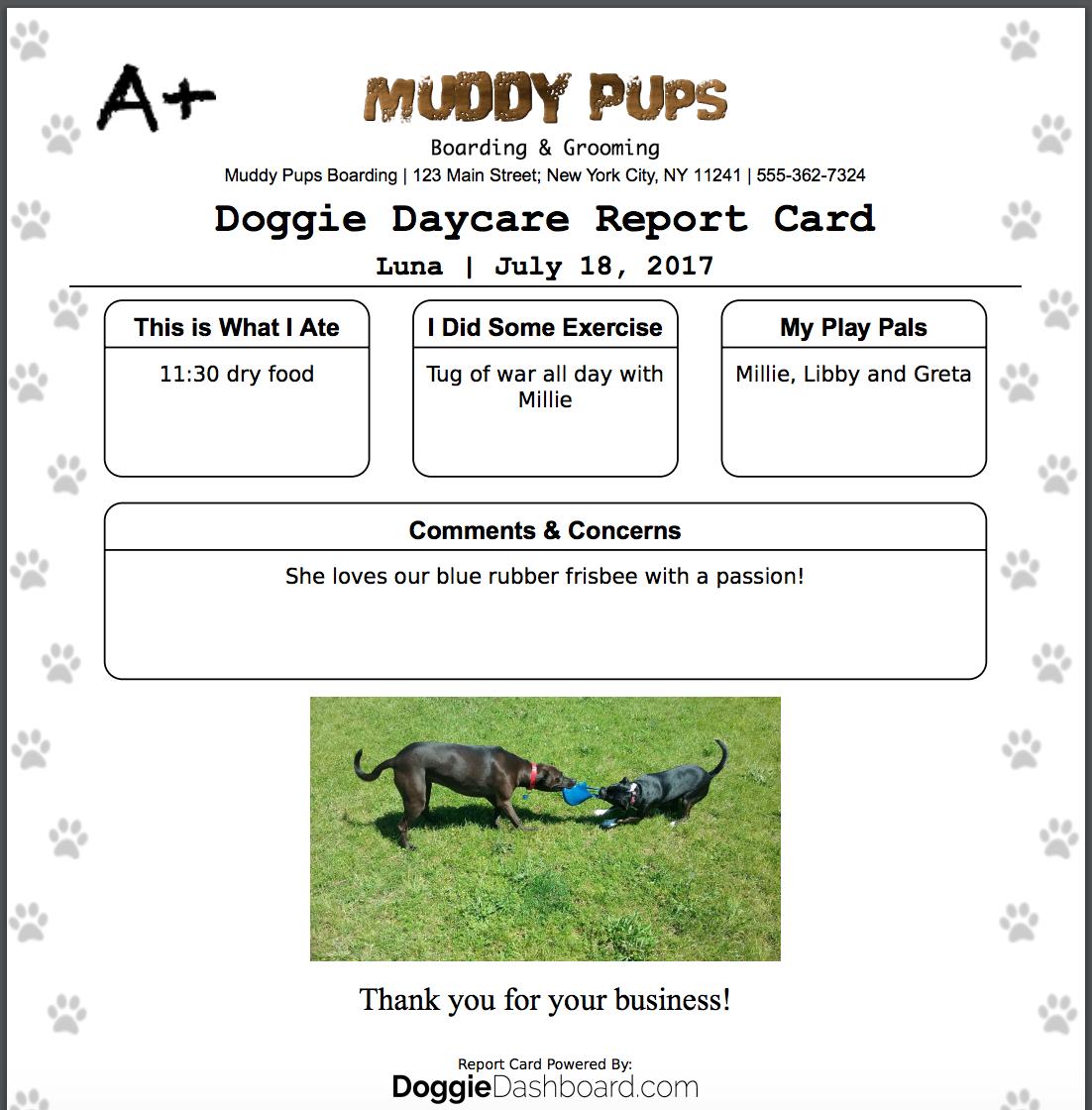 Dog Walking Excel Spreadsheet For Doggiedashboard Free Dog