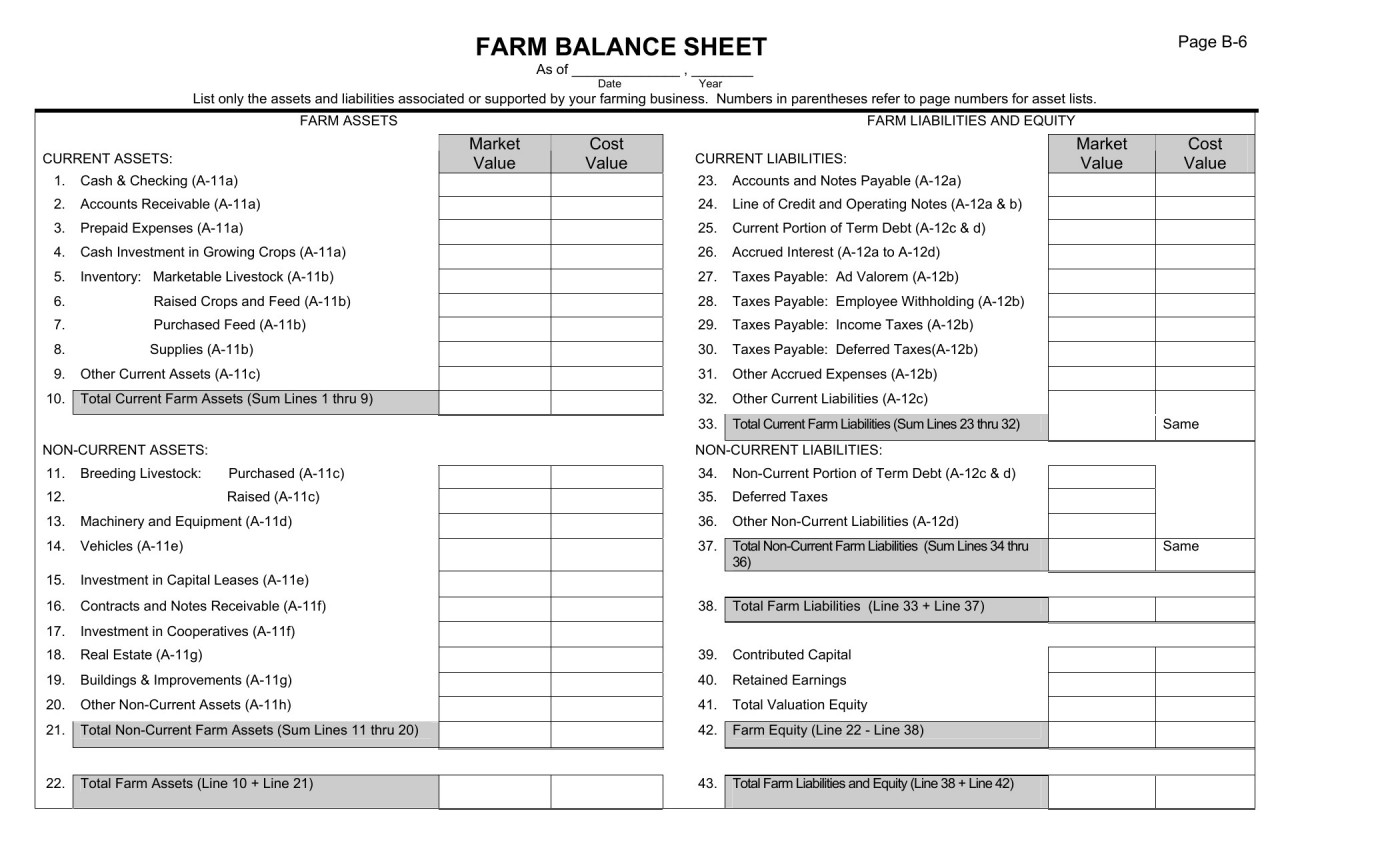 Spreadsheet Balance Sheet Template