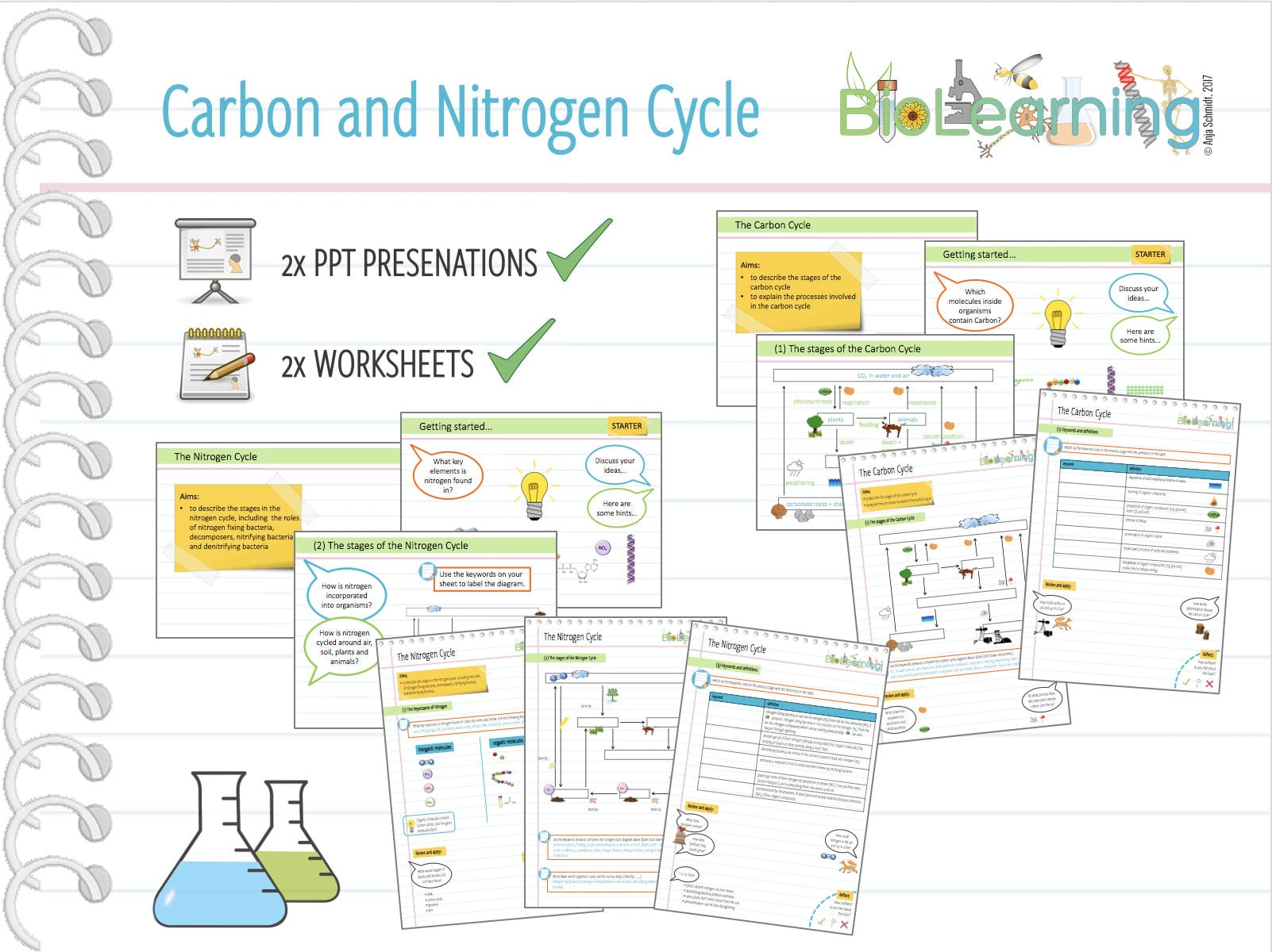 4x Carbon And Nitrogen Cycle 2x Powerpoint Ppts And 2x