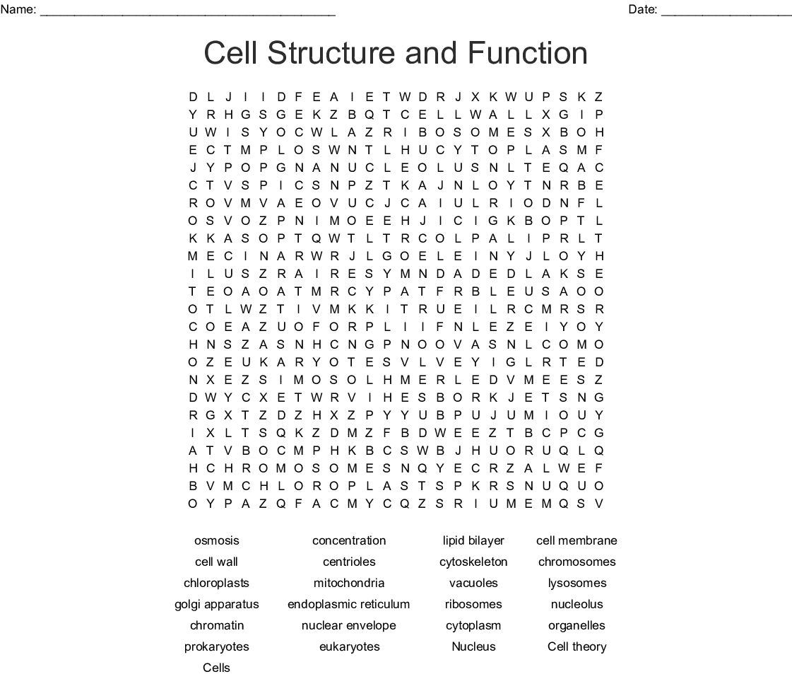 Cell Organelles Word Search Word