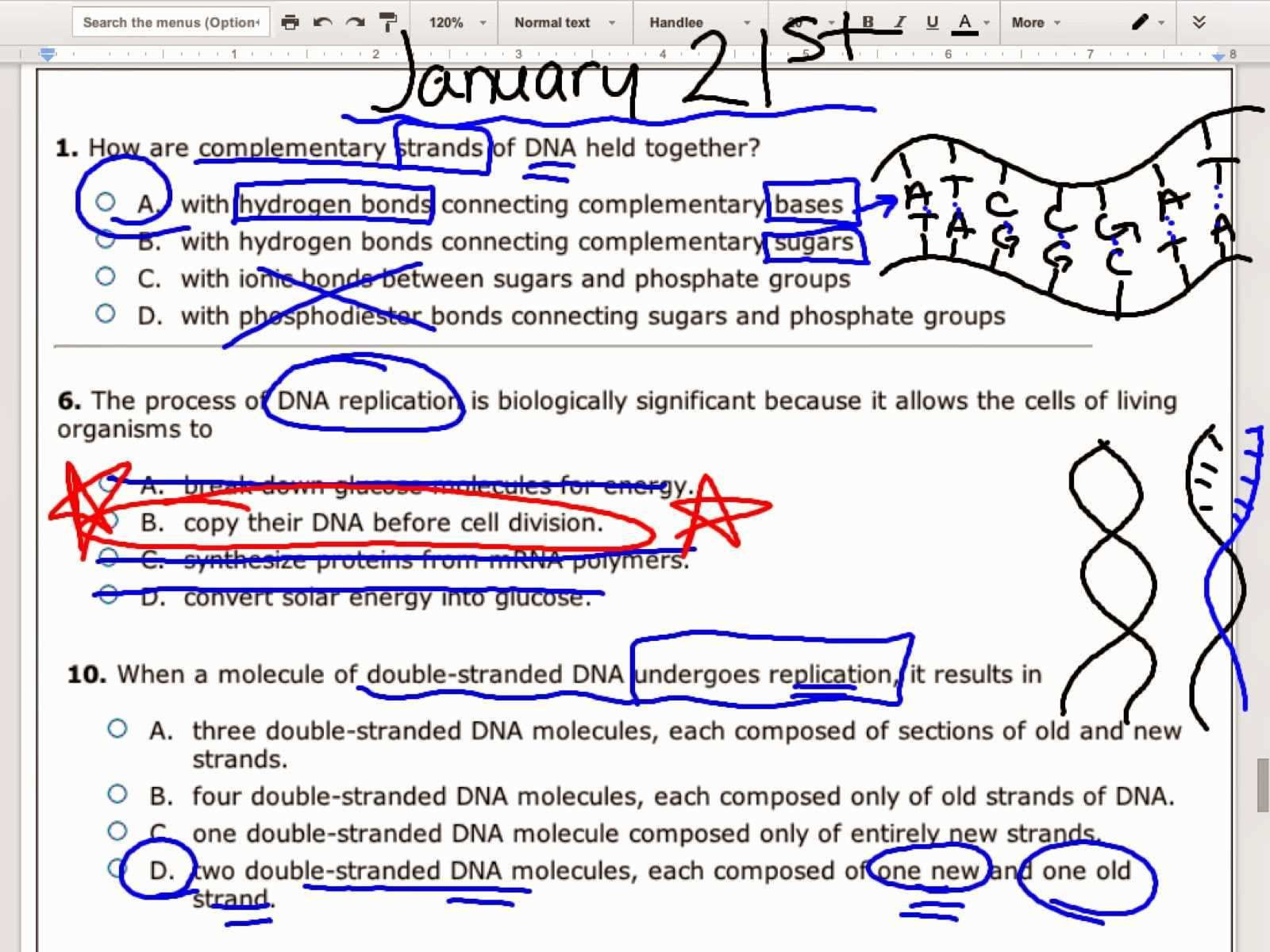Dna Reading Comprehension Worksheet