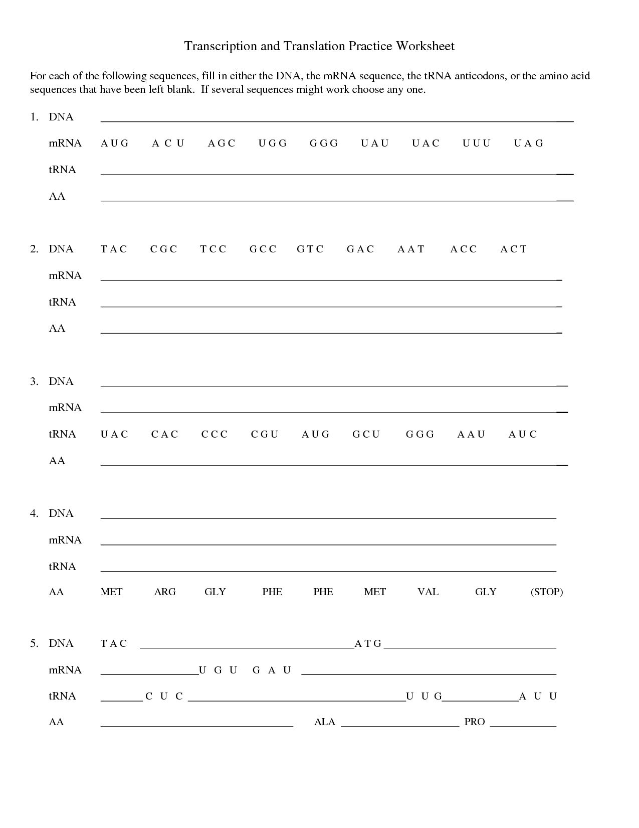 Dna Replication And Transcription Worksheet Answers