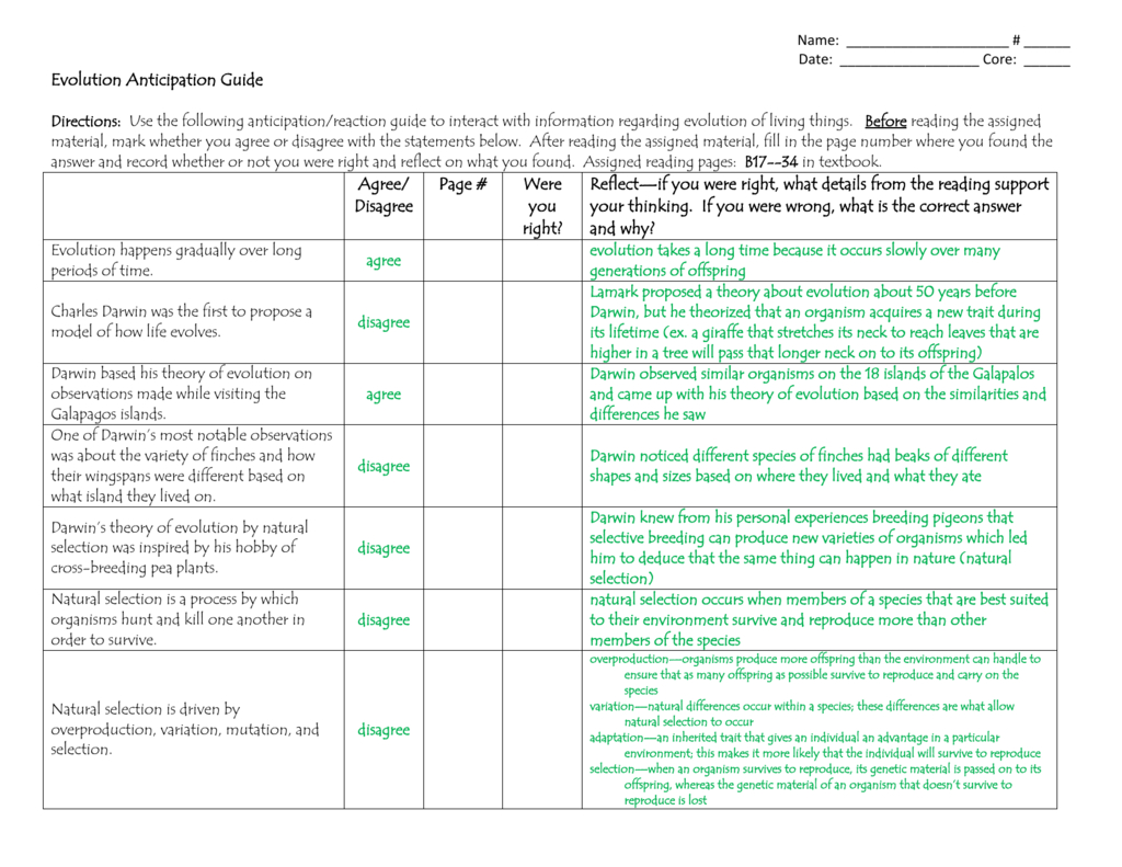 Anticipation Guide Worksheet Answers