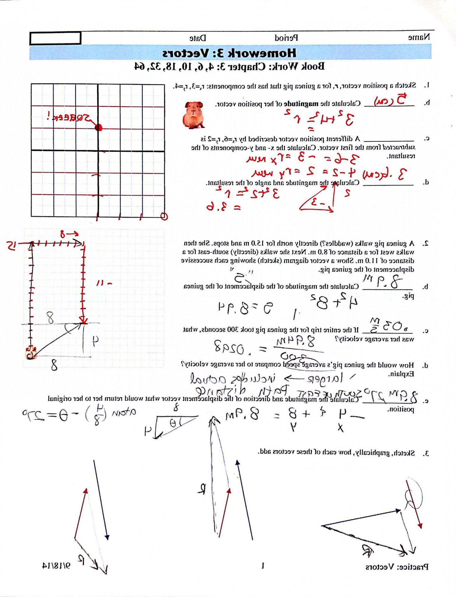 Slope Worksheet Answers