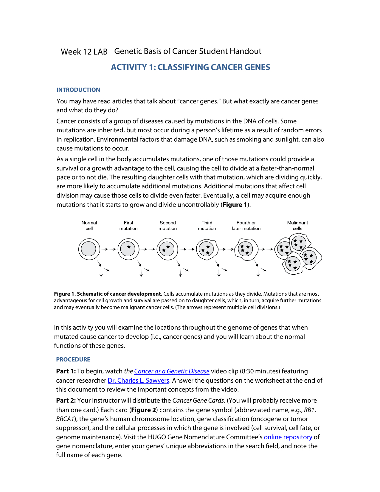 Fundamentals Of Genetics Worksheet Answers