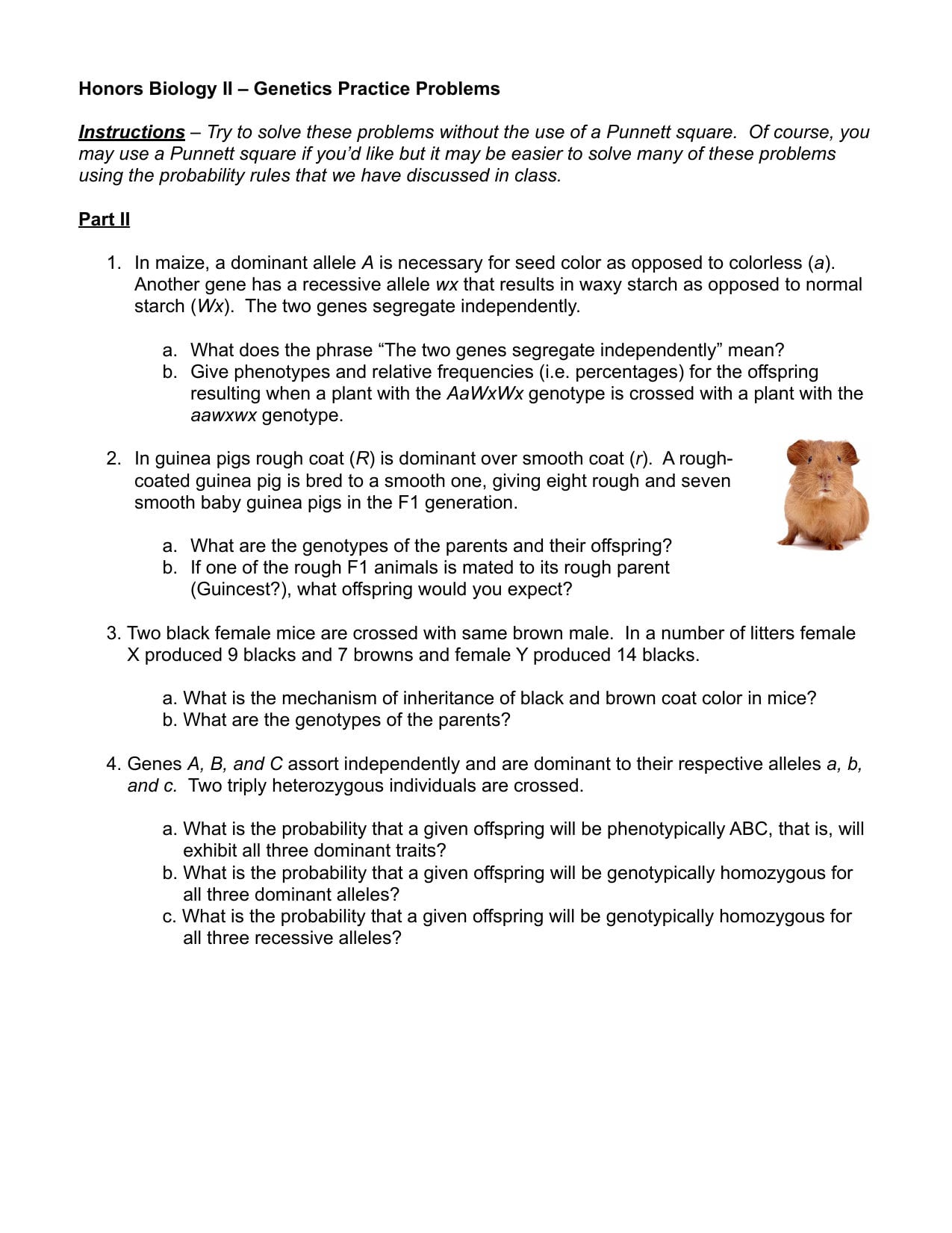 Genetics Practice Problems Simple Worksheet