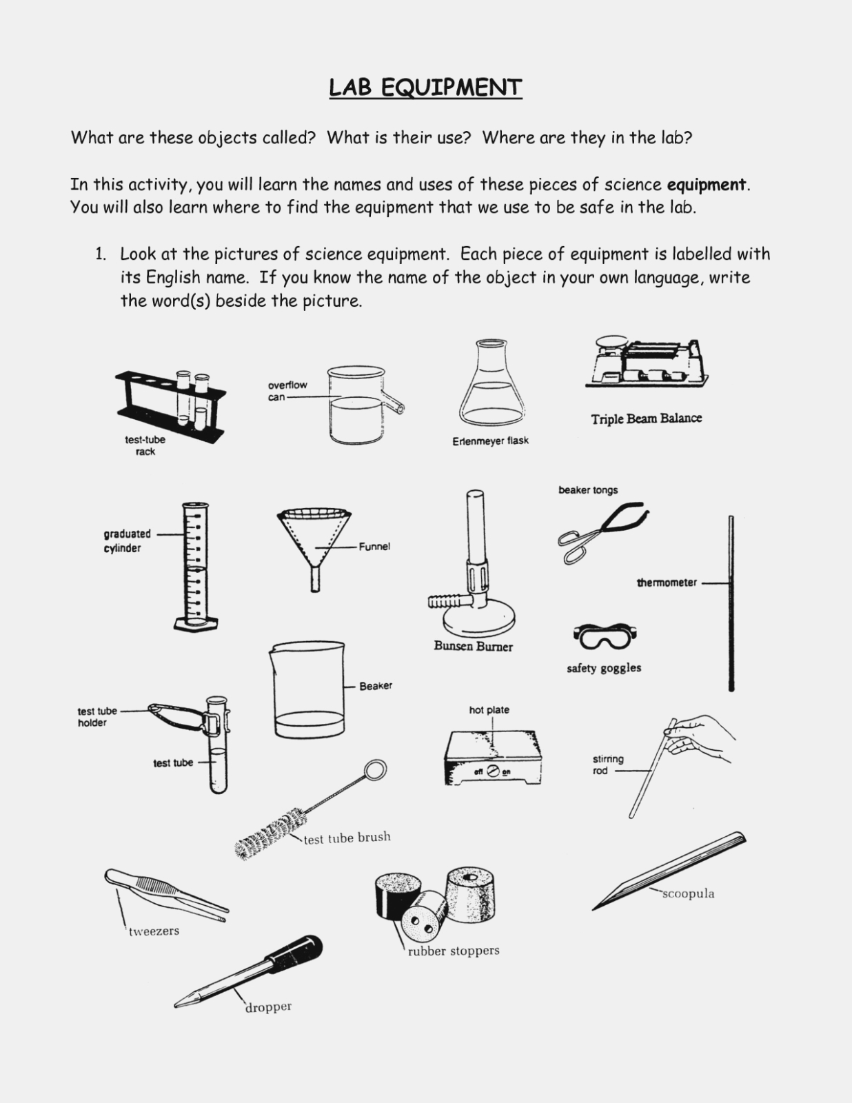 Lab Equipment Worksheet Answers Best Equipment In The