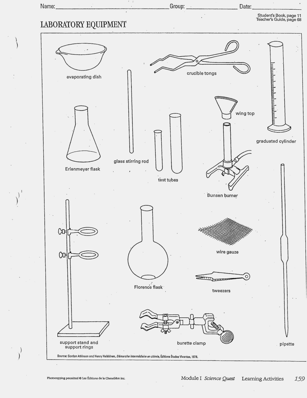 Lab Safety Cartoon Worksheet Netvs