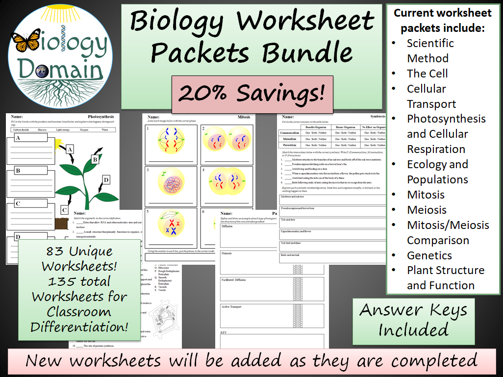 Plant Structure And Function Worksheets