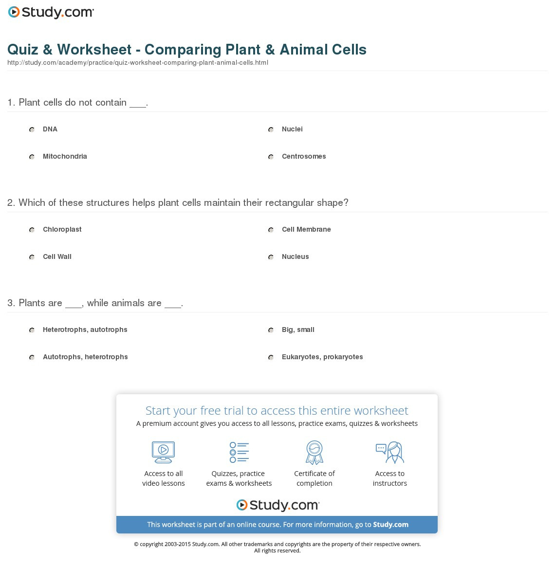Quiz Worksheet Comparing Plant Animal Cells Study