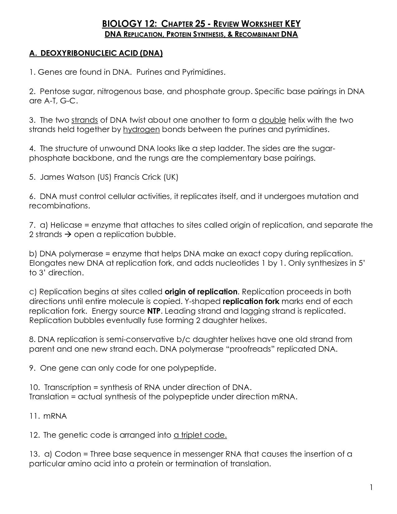 Worksheet Transcription And Translation Worksheet Answers