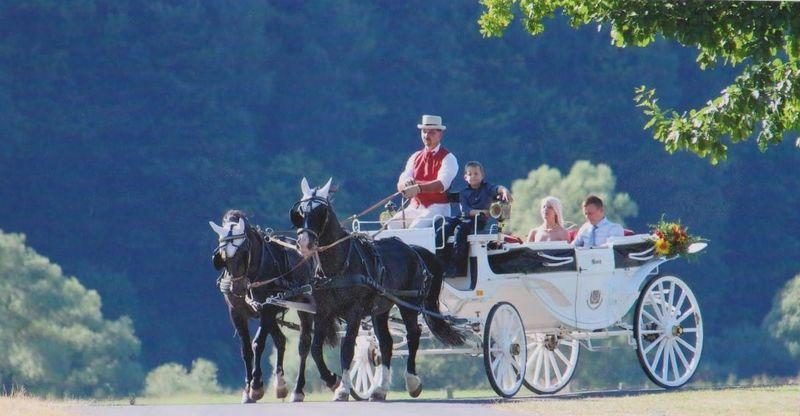 Schreck Fur Brautpaar Im Kreis Lippe Hochzeitskutsche Rammt Bus