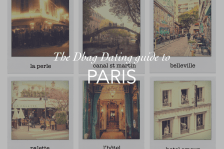 DD GUIDE TO PARIS